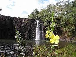 cachoeira do rio bom jardim