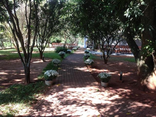 O caminho sob as árvores para chegar até o altar!