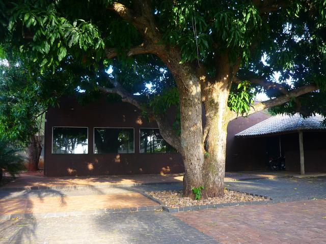 A mangueira, linda, onde geralmente são realizadas as cerimônias