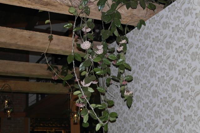 Detalhes que você só vê no Garden Manacá: a vegetação do próprio salão estava um show à parte.